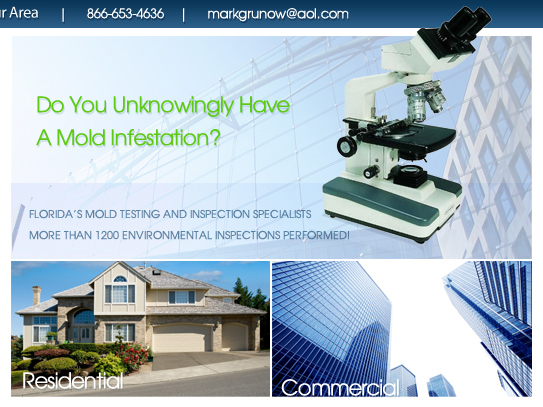mold consultation miami fl